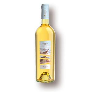 a bottle of vermentino wine