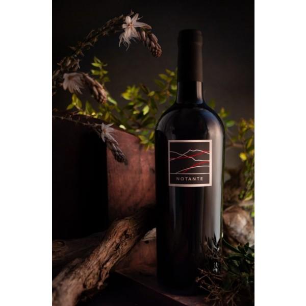 bottiglia di vino cannonau notante