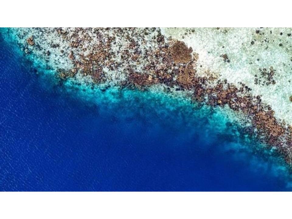blue zone o zona blue: le 5 zone della Terra do ve si vive più a lungo